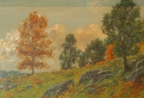 Hillside in Early Fall