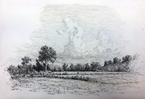 Arthur F. Davis. Field and trees.  Pen and ink.  1913. Gift of Richard Nylander in memory of Barbara G. and Donald O. Nylander. Restored with funding provided in 2018 by the Acton Community Preservation Fund.  AML 2018.1.47